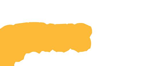 Steve auto pro logo